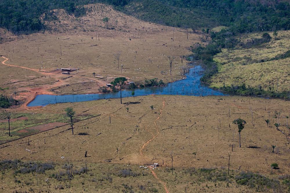 Fazenda Sao Joaquim (Cattle Ranch) in Mato Grosso, Brazil, August 6, 2008..Daniel Beltra/Greenpeace