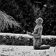 It was bitterly cold at Loyola Jesuit Center, Morristown, NJ when I came upon this new statue.  I was very touched by the placement as well as the feeling of faith that it conveys.  Black and white really brings out the depth of feeling that this image conveys.