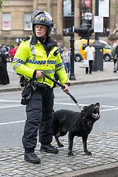 © Licensed to London News Pictures . 03/06/2017 . Liverpool , UK . Riot police and dog handlers separate the two sides . Hundreds of police manage a demonstration by the far-right street protest movement , the English Defence League ( EDL ) and an demonstration by opposing anti-fascists , including Unite Against Fascism ( UAF ) . Photo credit: Joel Goodman/LNP