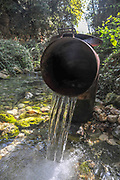 Treated water is being returned to nature at the Kziv stream nature reserve, Galilee, Israel