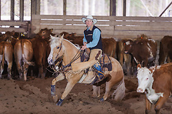 April 29 2017 - Minshall Farm Cutting 1, held at Minshall Farms, Hillsburgh Ontario. The event was put on by the Ontario Cutting Horse Association. Riding in the 5,000 Novice Horse Class is Michelle Waters on Genuine Whyte Gold owned by Noreen Whyte.