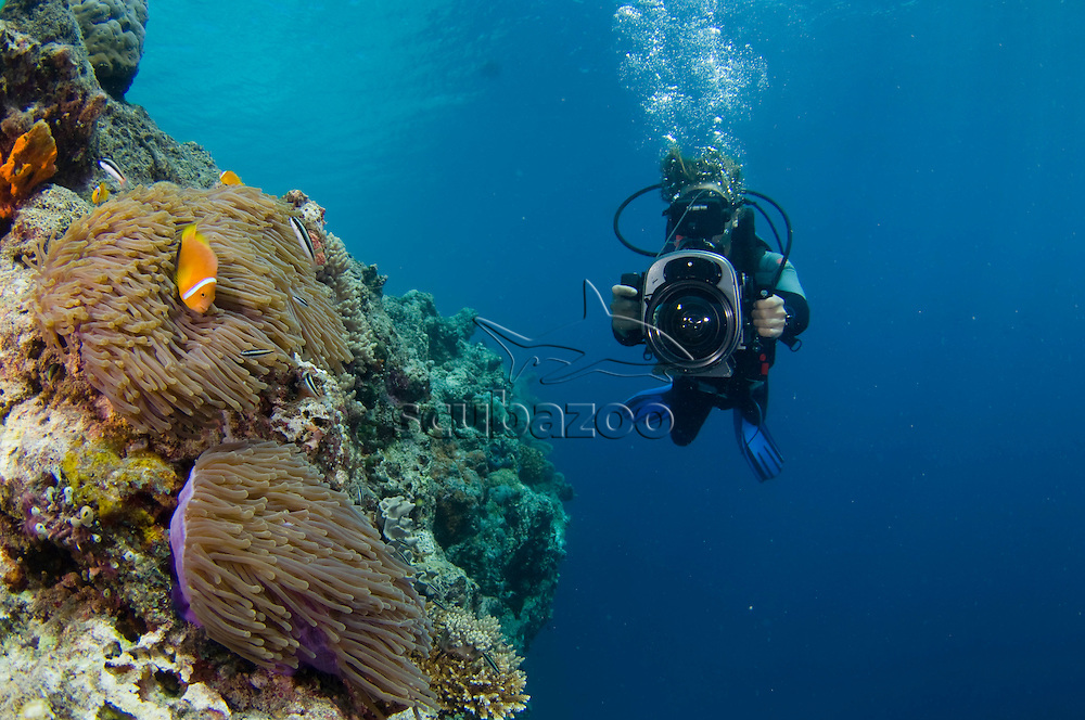 Roger Munns filming over reef, Kuda Giri Wreck, South Male, Maldives.