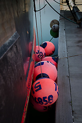 Pink Bumper Buoys, St. Herman Harbor, Kodiak Island, Alaska, US