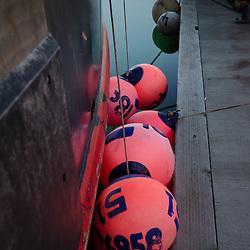 Pink Bumper Buoys, St. Herman Harbor, Kodiak Island, Alaska, US