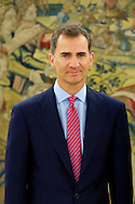 King Felipe Vi of Spain attends an audience with Jesus Maria Posada Moreno, President of the Congress of Deputies at Zarzuela Palace on June 23, 2014 in Madrid