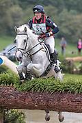 WIL ridden by Sophie Brown at Bramham International Horse Trials 2016 at  at Bramham Park, Bramham, United Kingdom on 11 June 2016. Photo by Mark P Doherty.