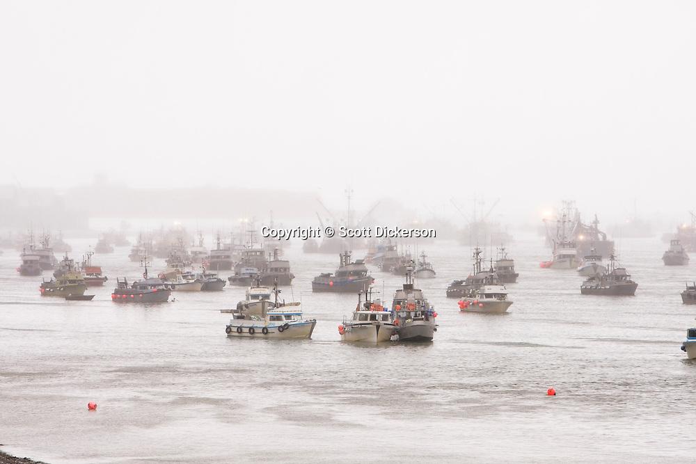 Commercial sockeye salmon fishing gillnet boats at anchor in the Naknek River in Bristol Bay, Alaska.