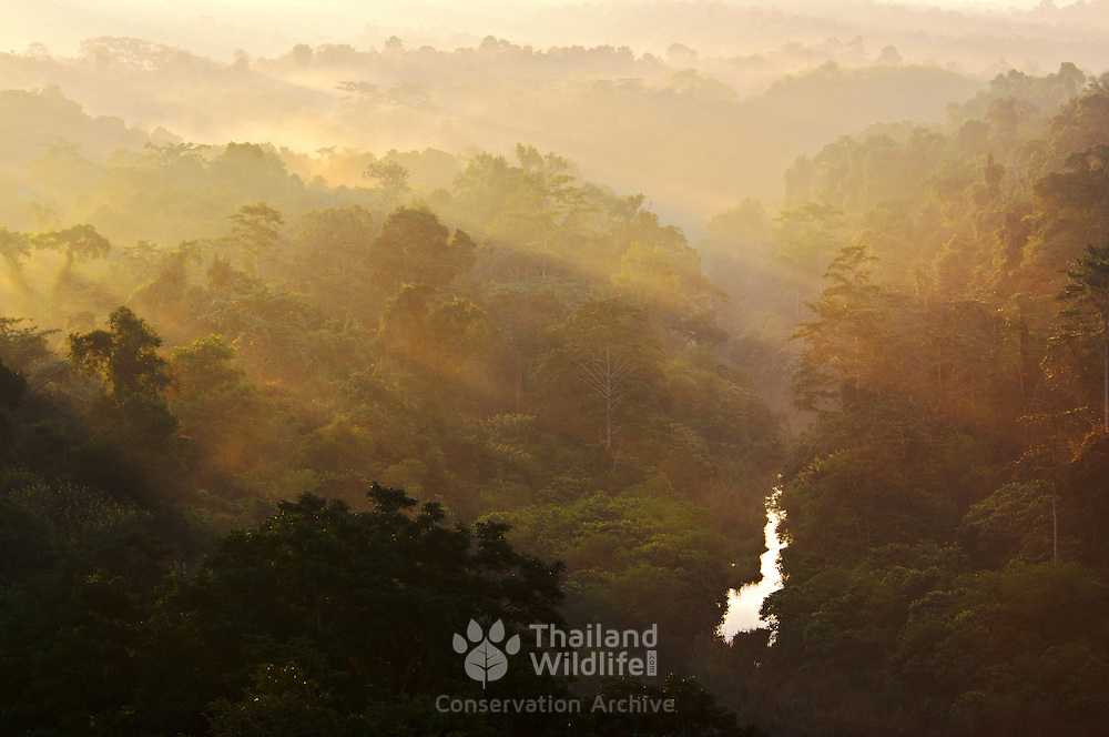 Dawn over the forests of Thailand at the start of summer. Shafts of light light the trees as the sun comes up over a mountain peak in Chaiyaphum, Thailand.
