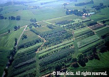 Aerials, Berks Co. PA, Farms, Mixed Cropping