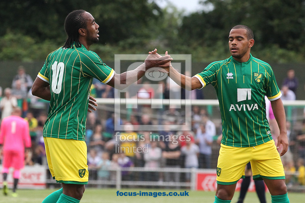 Cameron Jerome of Norwich celebrates opening the scoring with Louis Thompson of Norwich during the pre season friendly match at Top Field, Hitchin<br /> Picture by Paul Chesterton/Focus Images Ltd +44 7904 640267<br /> 14/07/2015