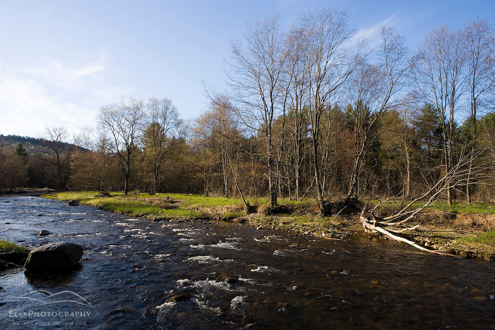 A spring morning on the Ashuelot River in Surry New Hampshire USA