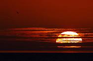 Sunset seen through a 1200mm lens.