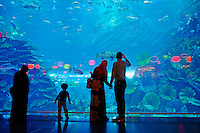 Emirats Arabes Unis, Dubai, Centre commercial Mall of the Emirates, Aquarium // United Arab Emirates, Dubai, Mall of the Emirates commercial center, Aquarium