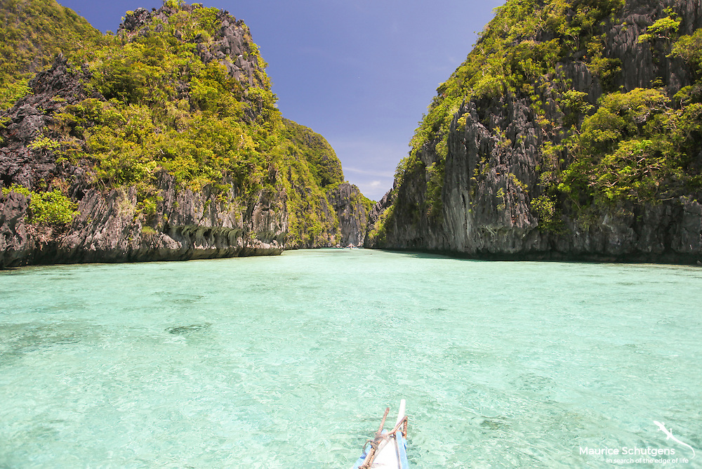 Carving through the watery paradise that is the Palawan's offshore islands.