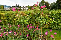 Gonneranlage Park and Gardens, Baden Baden, Baden-Württemberg, Germany