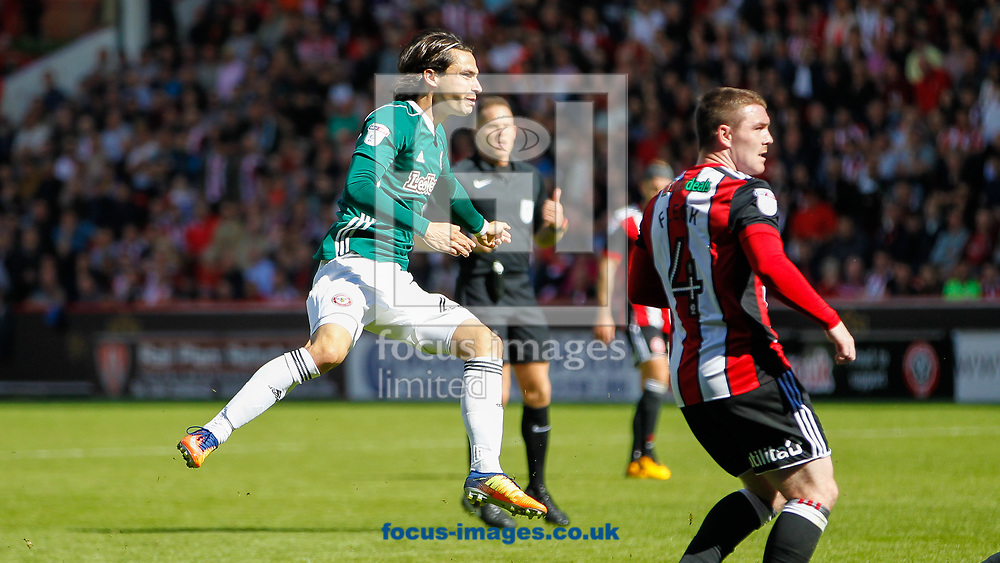Jota of Brentford during the Sky Bet Championship match between Sheffield United and Brentford at Bramall Lane, Sheffield<br /> Picture by Mark D Fuller/Focus Images Ltd +44 7774 216216<br /> 05/08/2017