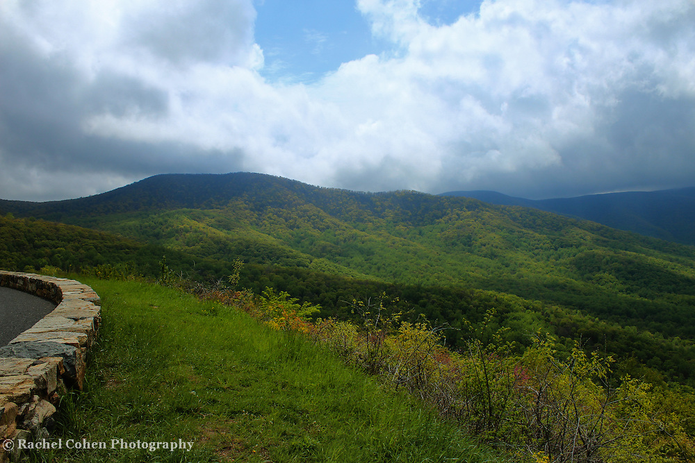 &quot;Right of the Curve&quot;<br /> <br /> Just to the right of the beautiful stone walls on skyline drive is a wonderful view of lush green forests in the mountains and valleys below!!<br /> <br /> The Blue Ridge Mountains by Rachel Cohen