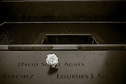9/11 Memorial, New York, New York. Photograph ©2015 Darren Carroll