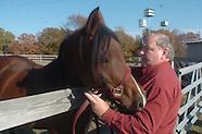 pray-horses