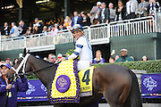 Jockey Javier Castellano, on Stopchargingmaria, smiles after winning the Longines Breeders' Cup Distaff, Friday, Oct. 30, 2015 at Keeneland Racecourse in Lexington, KY.  Longines, the Swiss watch manufacturer known for its elegant timepieces, is the Official Watch and Timekeeper of the Breeders' Cup World Championships and the Triple Crown. (Photo by Diane Bondareff/Invsion for Longines/AP Images)
