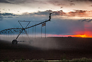 A center pivot, sprinkler irrigation system operating in southern Idaho
