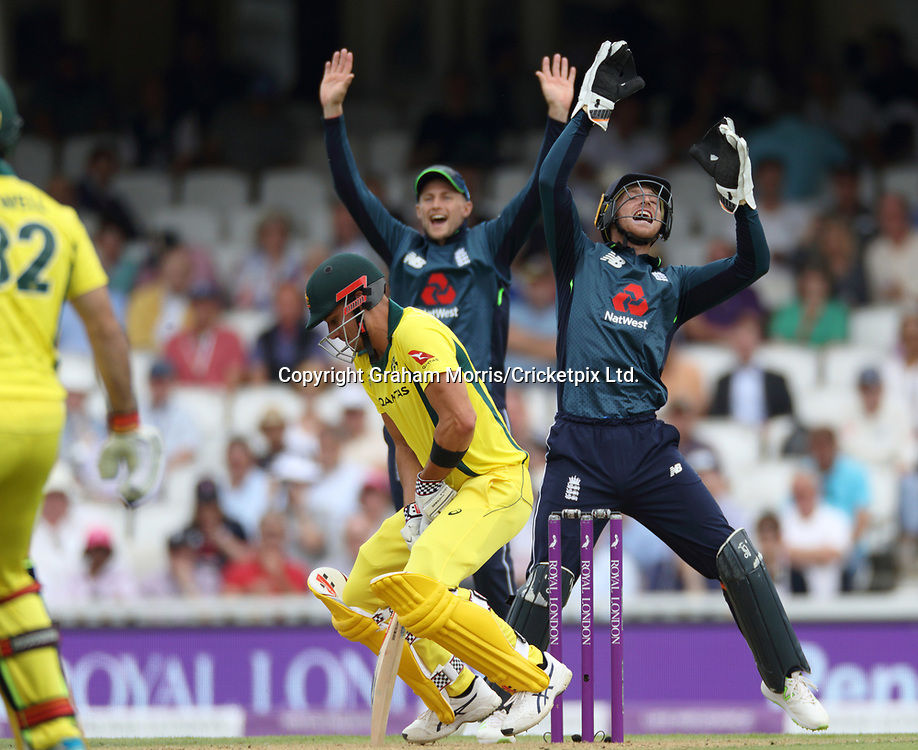 Marcus Stoinis is caught by wicket keeper Joss Buttler off the bowling of Adil Rashid during the first ODI between England and Australia at the Kia Oval, London. 13 June 2018, Photo: Graham Morris / www.photosport.nz