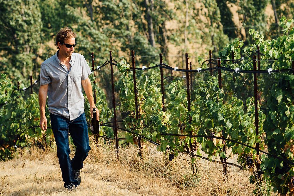 Steven Thompson winemaker at Analemma Vineyards in Mosier, Oregon.