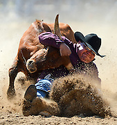 Photo by Gary Cosby Jr.    Lance Arviso rolls a steer as he competes in the steer wrestling event during slack day at the Limestone Sheriff's Rodeo Thursday, May 17, 2012.