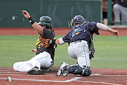 06 July 2013:  Mike Mobbs gets tagged out at home plate by catcher Matt Mirabal during a Frontier League Baseball game between the Gateway Grizzlies and the Normal CornBelters at Corn Crib Stadium on the campus of Heartland Community College in Normal Illinois