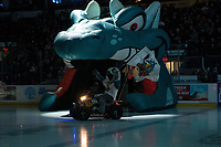 KELOWNA, CANADA - JANUARY 19:  Rocky Raccoon, the mascot of the Kelowna Rockets enters the ice on his polaris quad against the Prince Albert Raiders on January 19, 2019 at Prospera Place in Kelowna, British Columbia, Canada.  (Photo by Marissa Baecker/Shoot the Breeze)