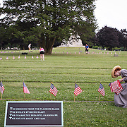 Judy Neemeyer, 14, plants flags at Soldiers National Cemetery, during the Sesquicentennial Anniversary of the Battle of Gettysburg, Pennsylvania on Sunday, June 30, 2013. A pivotal moment in the Civil War, over 50,000 soldiers were killed, wounded or missing after 3 days of battle from July 1-3, 1863.  Later that year, President Abraham Lincoln returned to Gettysburg to deliver his now famous Gettysburg Address to dedicate the cemetery there for the Union soldiers who died in battle.  John Boal photography