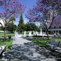 San Jose - CA