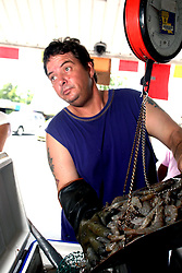 11june 2010. Westwego, Louisiana. <br /> Wayne Herbert, market trader  at the Shrimp Lot in Westwego weighs shrimp just outside New Orleans.  Incomes have crashed as all seafood prices have risen over 30% in the past 4 weeks alone as stocks run low thanks to closed fishing grounds affected by oil pollution. BP's disastrous environmental catastrophe out in the Gulf of Mexico threatens  the livelihood of many thousands of workers affiliated to the fishing industry in Louisiana. Earnings are down as much as  50% of those pre BP's oil disaster. Thousands of barrels of oil per day continues to leak into the Gulf because of the explosion and collapse of the Deepwater Horizon drilling platform 46 miles out to sea. The closure of fishing grounds both east and west of the Mississippi river outflow is crippling thousands of local fishermen and all affiliated businesses and families who rely on the seafood industry. None of the shrimp or other seafood offered at the market are fresh catch from today. Everything has been through the IQF (Instant Quick Freeze) process and is seafood caught out of state or earlier in the season and brought from storage freezers in Venice and Grand Isle. Louisiana stocks are virtually non-existant. With few new catches, the market will be forced to rely on farmed shrimp shipped in from Texas and Georgia. Local traders refuse to stock Chinese import fish raised with growth hormones, pesticides, fungicides and other contaminants widely found in Chinese farm raised seafood. Many fear losing their jobs and everything they own as a result of BP's Gulf Coast environmental disaster.<br /> Photo; Charlie Varley/varleypix.com