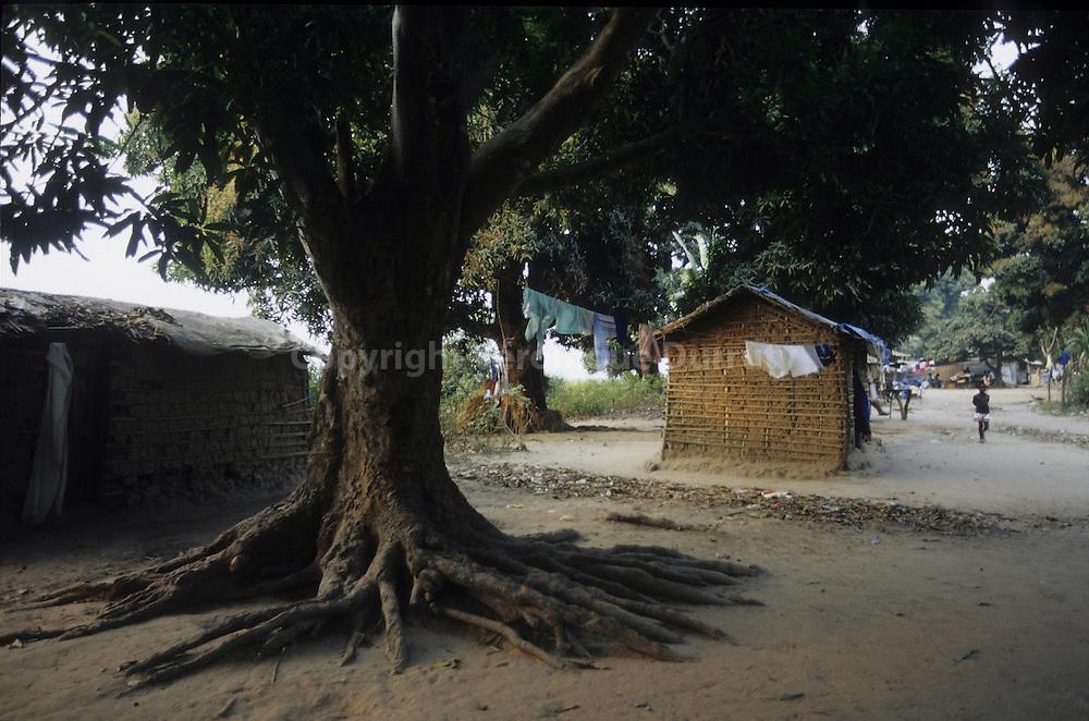 Mbamou island is an island on Congo river, a couple of hours fare by dugout away from Brazzaville. L'ile Mbamou est situee sur le fleuve Congo, ? quelques heures de pirogue de la capitale.