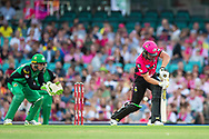 Sydney Sixers player Moises Henriques gets out lbw to Melbourne Stars player Sandeep Lamichhane at the Big Bash League cricket match between Sydney Sixers and Melbourne Stars at The Sydney Cricket Ground in Sydney, Australia