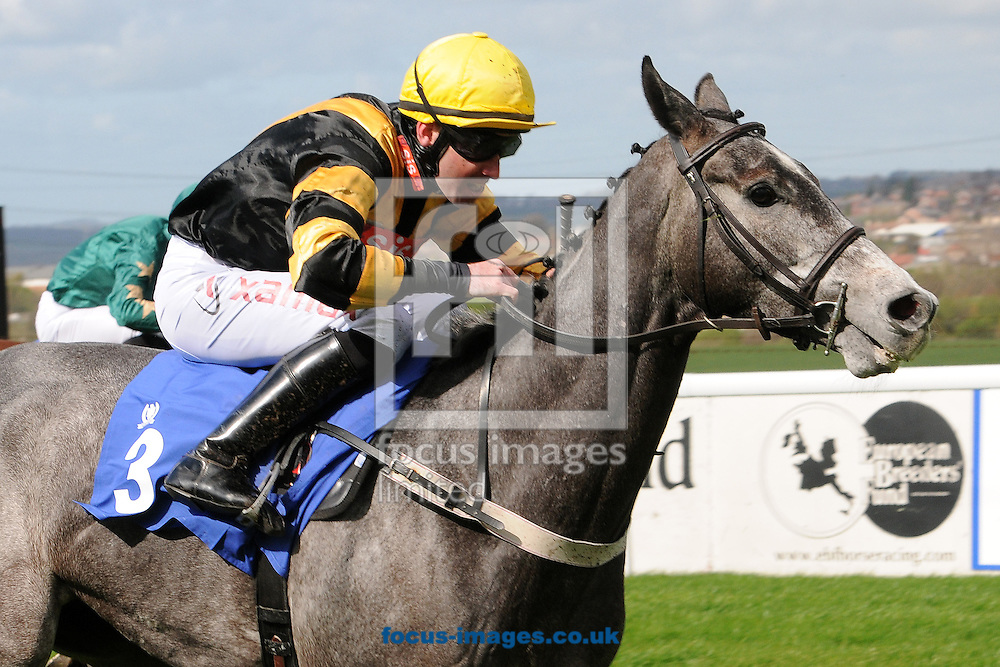 Champagne Rules and jockey Paddy Aspell win The High Rise Maiden Stakes at 100-1 at Pontefract Racecourse, Pontefract<br /> Picture by Alan Wright/Focus Images Ltd 07733 196489<br /> 08/04/2014