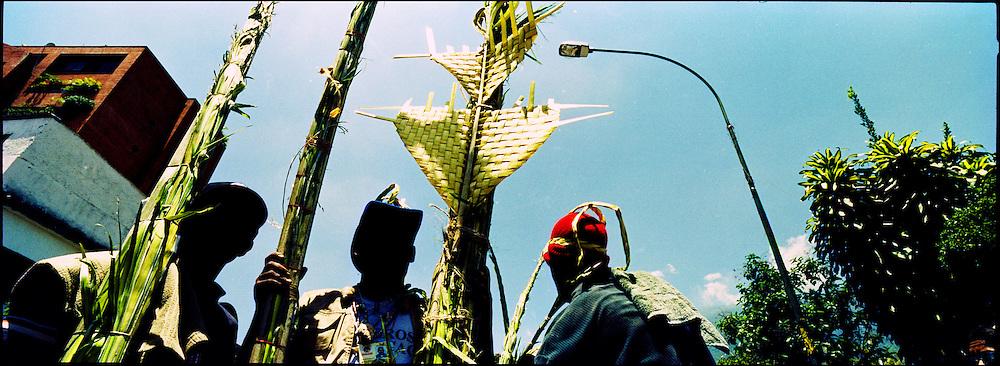 Los Palmeros de Chacao son herederos de una tradici&oacute;n que data de cerca de 1770, cuando el p&aacute;rroco Jos&eacute; Antonio Mohedano, ante la recurrencia de la peste de la fiebre amarilla que azotaba el valle de Caracas, quiso solicitar clemencia a Dios con una promesa y envi&oacute; a los peones de las haciendas cercanas a la monta&ntilde;a (Hoy Parque Nacional El Avila), a buscar la palma real para que bajaran sus hojas, evocando el pasaje b&iacute;blico de la entrada de Jes&uacute;s a Jerusal&eacute;n). Caracas 04 de abril del 2005. <br /> Photography by Aaron Sosa
