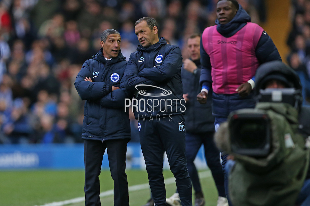 Chris Hughton and Colin Calderwood discuss tactics during the Sky Bet Championship Play Off First Leg match between Sheffield Wednesday and Brighton and Hove Albion at Hillsborough, Sheffield, England on 13 May 2016.