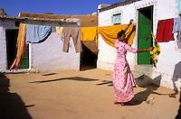 Inde - Rajasthan - Village peint des environs de Barmer // India. Rajasthan. Village near Barmer