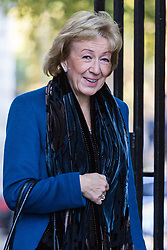 London, November 06 2017. Leader of the House of Commons Andrea Leadsom in Downing Street visiting the Prime Minister's official residence at No. 10. © Paul Davey