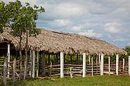Farm near Santa Lucia, Pinar del Rio, Cuba.