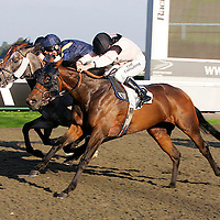 Prospera and Jim Crowley winning the 4.50 race