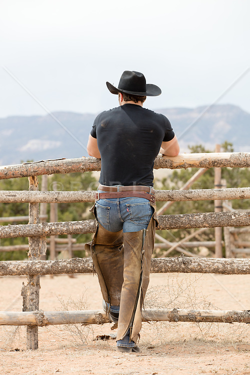 rear view of a cowboy in chaps on a ranch