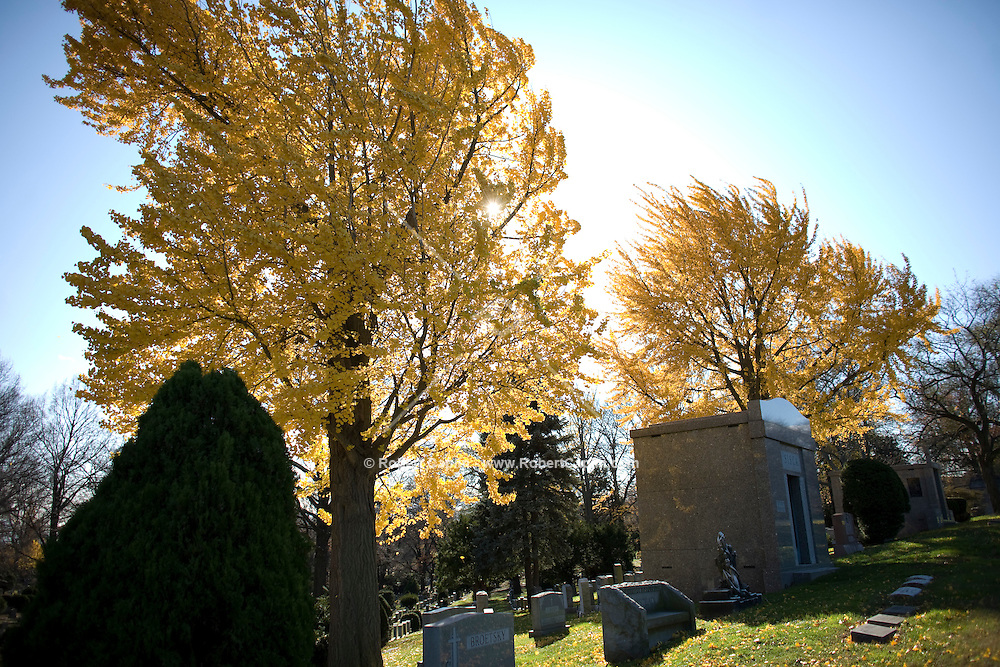 Woodlawn Cemetery in The Bronx. Nov. 18, 2008. Robert Caplin For The New York Times