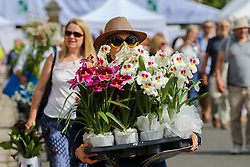 May 25, 2019 - London, UK, UK - London, UK. Visitors to the RHS Chelsea Flower Show carry wide variety of striking plants and flowers sold off cheap by the exhibitors on the final day of the show. The Royal Horticultural Society Chelsea Flower Show is an annual garden show held in the grounds of the Royal Hospital Chelsea in West London since 1913. (Credit Image: © Dinendra Haria/London News Pictures via ZUMA Wire)