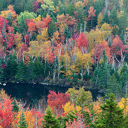 Zealand Pond in fall as seen from Zealand Falls. White Mountain National Forest, New Hampshire.