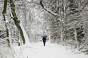 Walker strolls with umbrella across snow-covered Hampstead Heath, London, United Kingdom