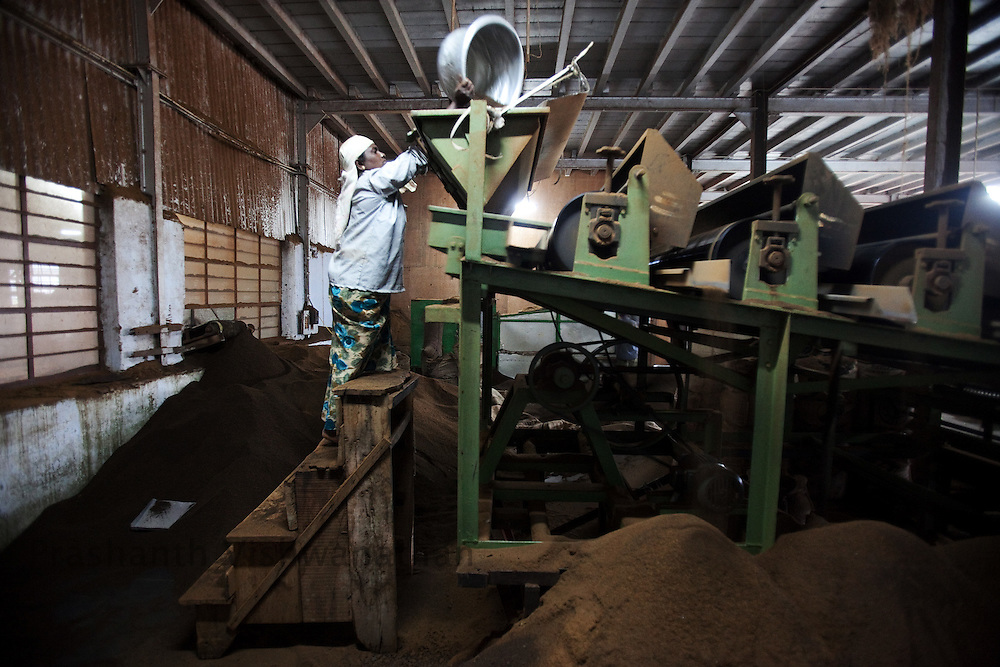 A worker feeds semi processed tea into a machine  for further processing at a tea factory in Conoor, India, on Thursday May 20, 2010. Photographer: Prashanth Vishwanathan/Bloomberg News