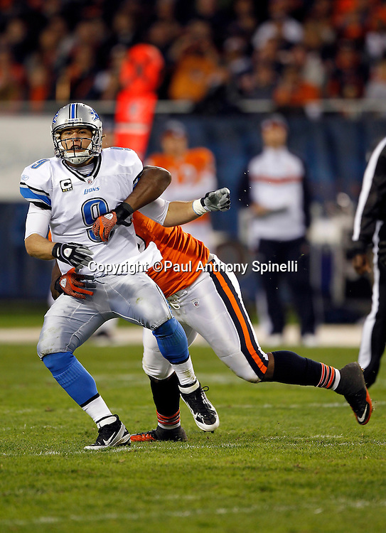 Detroit Lions quarterback Matthew Stafford (9) grimaces as he gets sacked by Chicago Bears defensive tackle Henry Melton (69) during the NFL week 10 football game against the Chicago Bears on Sunday, November 13, 2011 in Chicago, Illinois. The Bears won the game 37-13. ©Paul Anthony Spinelli