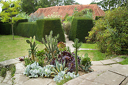 Cacti and succulents planted outside for the summer in a bed on the circular steps at Great Dixter. Exotic garden beyond. Exotic garden beyond